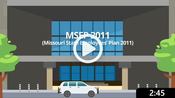 MSEP 2011 Video